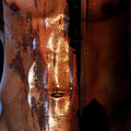 Barmuda Metallic  2 by Mark Ashkenazi