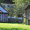 Barn And Chicken Coop by Duane McCullough