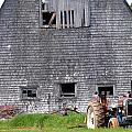 Barn And Tractor Pei by Steve Archbold