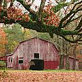 Barn And Tree by Robert Camp