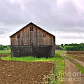 Barn By The Road Square by Marcel  J Goetz  Sr