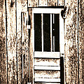 Barn Door by Chastity Hoff