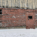 Barn Door In Winter by David Arment