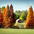 Barn In Fall by Val Stone Creager