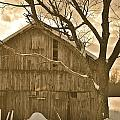 Barn In Sepia by Rich Tanguay