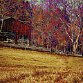 Barn In The Woods-featured In Barns Big And Small Group by Ericamaxine Price