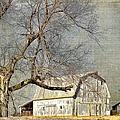 Barn - Missouri's Backroads by Liane Wright
