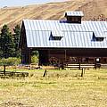 Barn Near Ellensburg Wa by Cathy Anderson