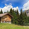 barn on Alpine pasture by Antonio Scarpi
