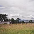 Barn On Hway 84 by Bobbee Rickard