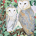 Barn Owls by Suzanne Bailey