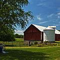Barn Painter by Guy Shultz