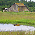 Barn Reflection by Art Block Collections
