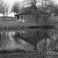Barn Reflection by Crystal Nederman