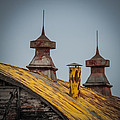 Barn Roof In Color by Paul Freidlund