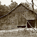 barn Sepia 2 by Dwight Cook