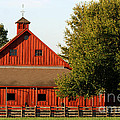 Barn South-3586 by Gary Gingrich Galleries