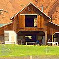 Barn Ten Sleep Wyoming by Cathy Anderson