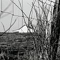 Barn Through Fence by IMH Photog