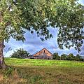 Barn Under A Tree. by Larry Braun