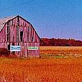 Barn Van Dyke by Daniel Thompson