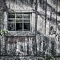Barn Window by Joan Carroll