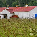 Barn With Blue Door by Art Block Collections