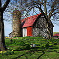 Barn With Silo In Springtime by Mary Lee Dereske