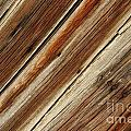 Barn Wood Detail by Vivian Christopher