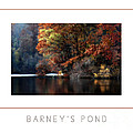 Barney's Pond Poster by Mike Nellums