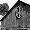 Barns For Peace by Art Block Collections