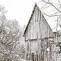 Barnyard Snowfall by Cheryl Baxter