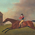 Baronet With Sam Chifney Up by George Stubbs