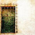 Barred Window by Sandy MacGowan