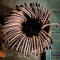 Barrel Of Horseshoes by Paul Freidlund