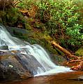 Base Of Laurel Falls by Carolyn Derstine