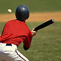 Baseball Batter by Lane Erickson