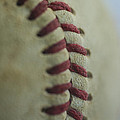 Baseball Macro 2 by David Haskett II