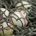 Baseballs And Net by Cindy Manero