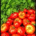 Basil Tomato by Susan Garren