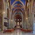 Basilica Di Santa Maria Sopra Minerva by Uri Baruch