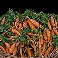 Basket Of Carrots by Michael Moriarty