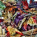 Basket Of Colors by Wayne Wood