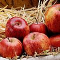 Basket Of Delicious Red Apples by Bruno D'Andrea