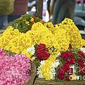 Basket Of Flowers by Mini Arora