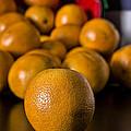Basket Of Oranges by Jeff Burton