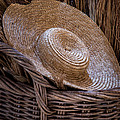 Basket Of Straw by James Woody