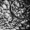 Basketball Heaven by Karol Livote