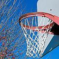 Basketball Net by Valentino Visentini