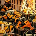 Baskets Of Gourds by Beth Ferris Sale